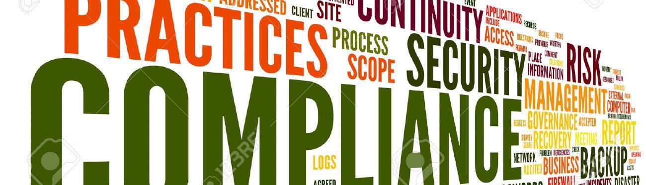 e-Auditors Manual Guide